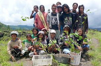 国内外での植林、植樹